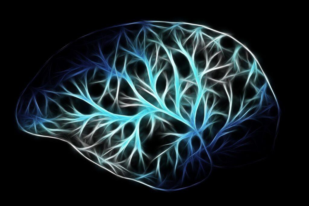 brain-Gerd-Altmann-Pixabay